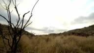 Timelapse of clouds moving overhead from South African Mountain top video