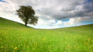 timelapse of cloudscape with summer meadow in bavaria, germany video