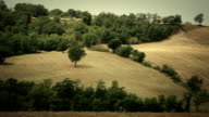 Timelapse of Maremma Countryside: Tuscany video