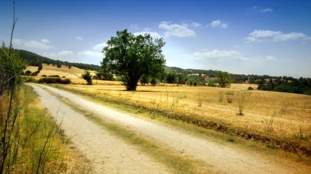 Timelapse of Maremma Countryside: Tuscany video