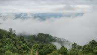 Time-lapse of moving Misty Clouds fast movement over the forest, Natural video