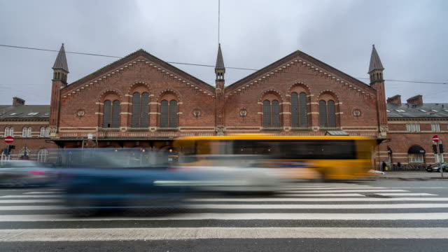 Time-lapse of Pedestian Trabeller crowded at Copenhagen Train Station Terminal video