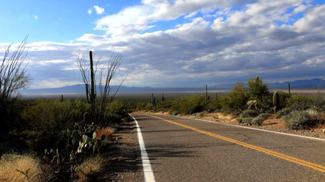 Timelapse of roadside in Tucson Mountain Park video