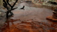 Timelapse of water moving over rock pool puddle video