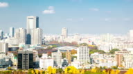 HD Time-lapse: Osaka Cityscape video