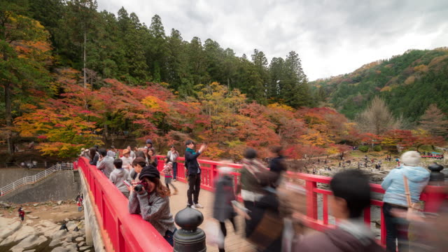 Time-lapse: Pedestrian crowded at korankei Forest park Autumn Nagoya Japan video