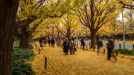 Time-lapse: Pedestrians crowded Aoyama Garden Tokyo Japan video