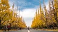 Time-lapse: Pedestrians crowded at Aoyama Meiji Jingu Garden Tokyo Japan video