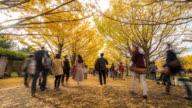 Time-lapse: Pedestrians crowded at Tachikawa Garden Tokyo Japan video