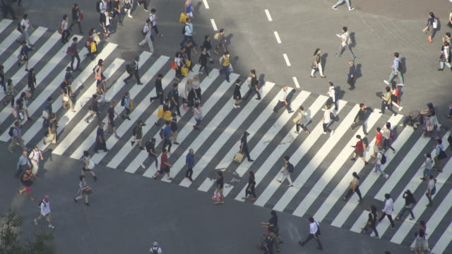 Time-lapse Shibuya Crossing, Japan video