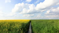 HD Timelapse: Sky and Fields, Agricultural Landscape video
