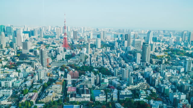 timelapse Tokyo City with Tokyo Tower video