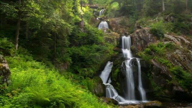 4K Time-lapse: Tropical Waterfall in Forest triberg waterfall Germany video