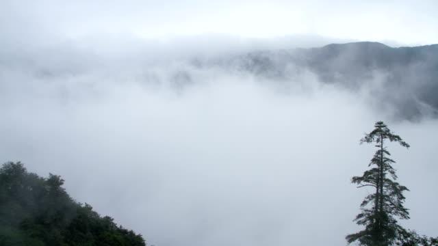 Timelapse view in Mount Emei video