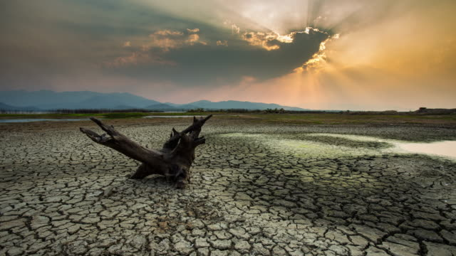 timelapse:cracked earth near dry lake in dry season video