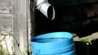 tin water run pile butt video