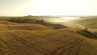 AERIAL Tire tracks in fields of wheat video