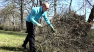 Tired gardener man carry cut tree twigs and put in pile. video