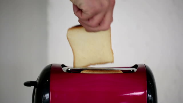 Toasting bread in toaster machine video