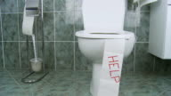 HD DOLLY: Toilet Digestive Problems video