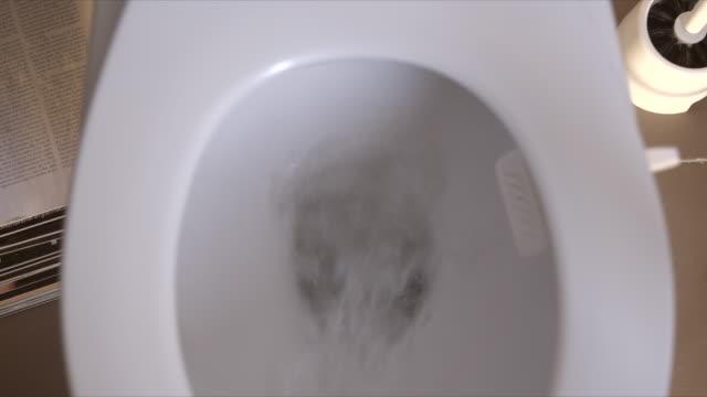 Toilet flush video