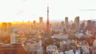 Tokyo city at twilight video