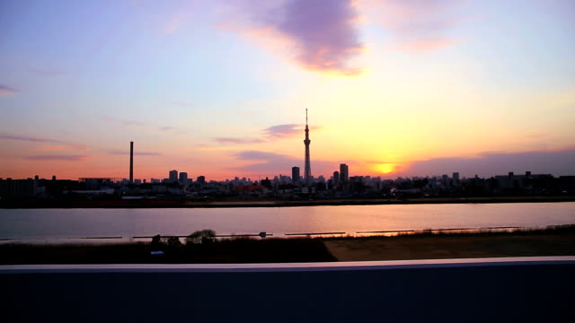 Tokyo cityscape with the Tokyo Skytree. video