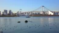 Tokyo Rainbow Bridge -4K- video