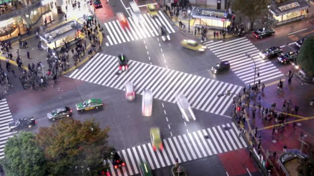 Tokyo Shibuya Crossing video