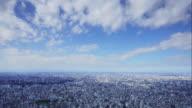 4K Tokyo Tower aerial timelapse Skyline - urban panorama - cinematic 24fps video