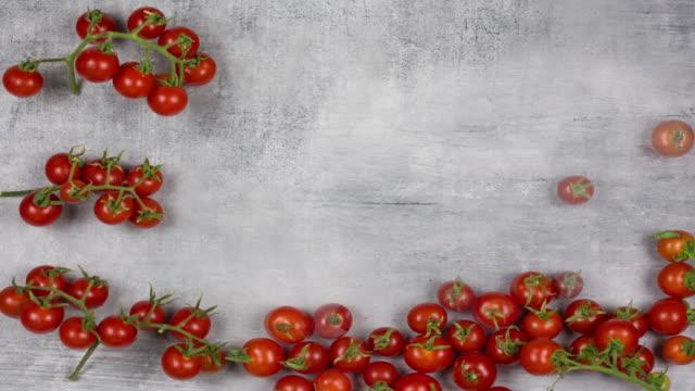 Tomato Animation video