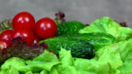 Tomato, cucumber and lettuce vegetables. turntable clockwise video