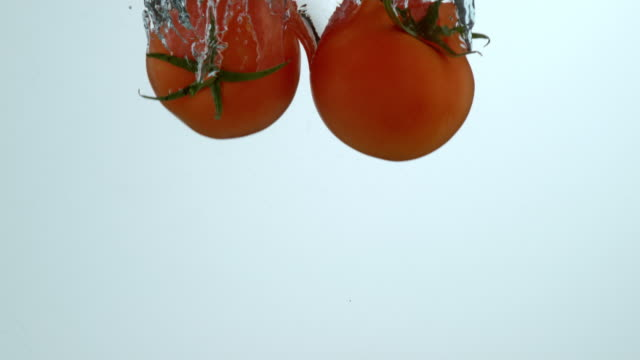 Tomatoes splashing into water in slow motion video
