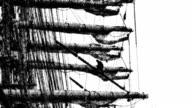 toon: sails over sky [ii] video