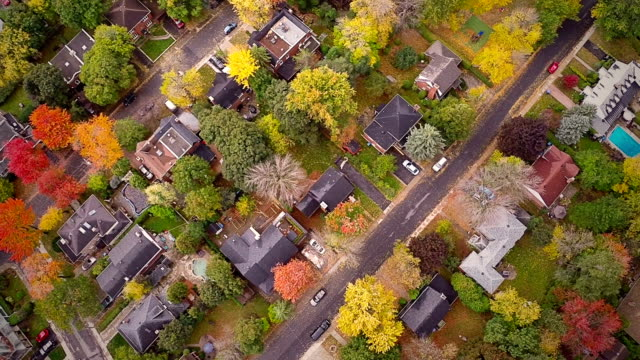 Top Suburban View of Montreal and beautiful Trees video