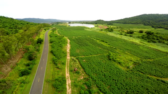 Top view with road on green field, mountain and reservoir. video