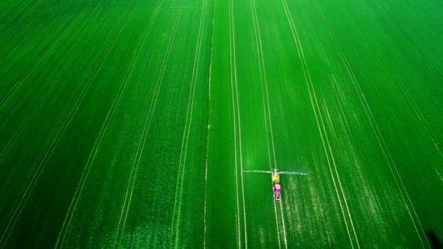 Top wiev of Agricultural tractor spraying field with pesticides. video