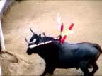 Toro video