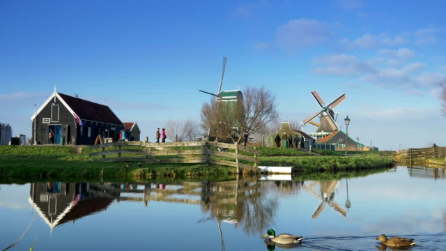 Touristic wooden houses and windmills at the Zaanse Schans. Holland video