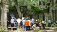Tourists visit Ta Prohm Temple, Angkor, Cambodia video
