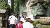 Tourists visit Ta Prohm Temple video