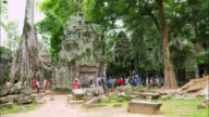 Tourists visit Ta Prohm Temple video