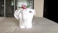 Towel Elephant video