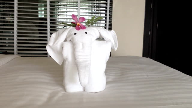 Towel Elephant video