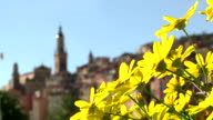 Town of Menton with Yellow flowers change focus video