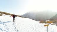 Tracking shot of hiker walking on mountain trail video