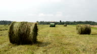 tractor gather hay bale video