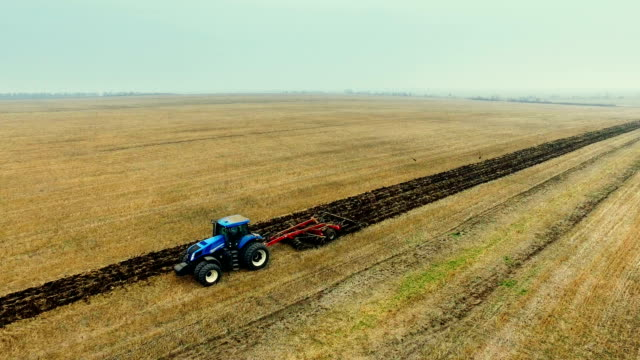 Tractor harrowing field and flock of birds whirling over ground video