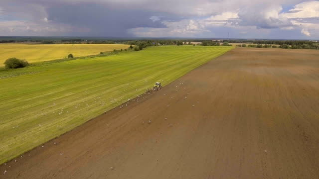 Tractor plowing a field.Aerial video video