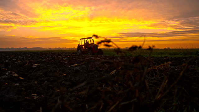 WA Tractor Plowing The Field video